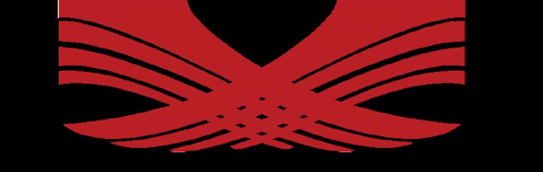 Styrkir til atvinnumála kvenna árið 2017